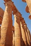 Prachtige kolommen van de Grote Hypostyle Zaal Stock Foto