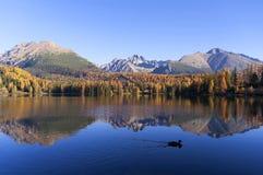 Prachtige mening van het meer in de herfst Stock Foto