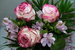 Prachtige regeling van witte en rode rozen Stock Foto