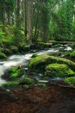 Prachtige rivier royalty-vrije stock foto