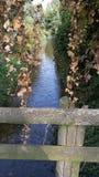 Prachtige rivier Royalty-vrije Stock Afbeeldingen