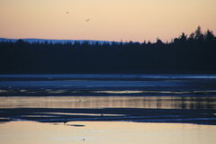 Prachtvoller aber einfrierender Sonnenuntergang über einer schottischen Küstendorf Bucht 14 lizenzfreie stockfotografie