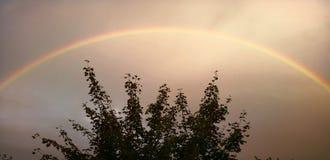 Prachtvoller Regenbogen Stockfoto