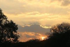 Prachtvoller Sonnenuntergang mit dem Sonnenglühen Lizenzfreies Stockfoto
