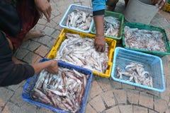 Prachuap Khiri Khan, Tailândia Fotografia de Stock
