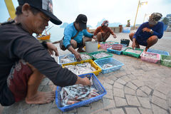 Prachuap Khiri Khan, Thailand. March 22: Fishermen unloading squid on the beach on March 22, 2014 in Stock Image