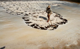 Pracować na soli polu Zdjęcie Royalty Free