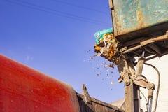Pracownicy ładują śmieci od zbiornika w specjalizującej się samochodowej śmieciarskiej ciężarówce Specjalizujący się samochód usu obraz stock