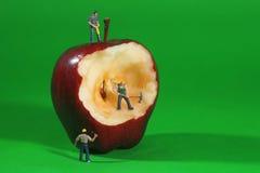 Pracownicy Budowlani w Konceptualny metaforyka Z Apple Obrazy Stock