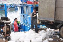 Pracownicy mleją lód konserwować tuńczyk ryba w Hon Ro porcie morskim, Nha Trang miasto Zdjęcie Stock