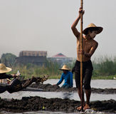 Pracownicy na Inle jeziorze w Birma &-x28; Myanmar&-x29; Zdjęcie Royalty Free