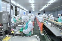 Pracownicy pracują mocno na linii produkcyjnej w owoce morza fabryce w Ho Chi Minh mieście, Wietnam