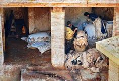 Pracownicy w Rzemiennej tradycyjnej garbarni fez Morocco Zdjęcie Royalty Free
