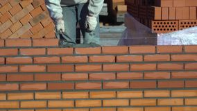 Pracownik buduje ścianę cegły budowniczy na budynku robi murarstwu budowniczy przy budową robi zdjęcie wideo