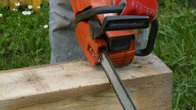 Pracownik ciie drewnianego promień z benzyny saw zbiory