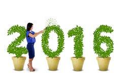 Pracownik ciie drzewo kształtować liczby 2016 Zdjęcie Stock