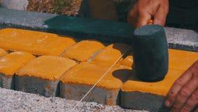 Pracownik kłaść kamienną brukową cegiełkę zbiory