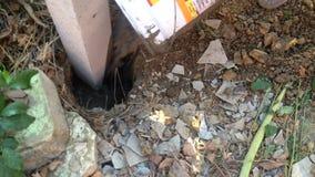 Pracownik nalewał cement wewnątrz betonowy filar zbiory wideo
