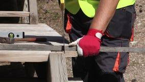 Pracownik pił drewniana deska zbiory wideo
