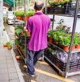 Pracownik rusza się stojaka salowi kwiaty fotografia royalty free