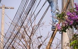 Pracownik Wspina się drabinę Instalować linię Fotografia Stock