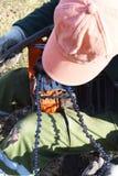 Pracownika narządzania piła łańcuchowa dla pracy zdjęcia stock
