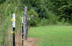 Practical Country Fenceline in Summer. Photo is of an ordinary North Carolina fence line on a farm in the summer with both metal stake and cedar tree posts Royalty Free Stock Images