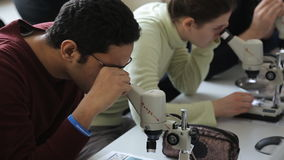Practical training for students at university with use of optical microscopes. stock video