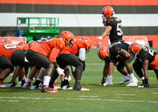 Practice Drills NFL Cleveland Browns 2017 Stock Photos
