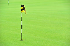 Practice Golf Putting Hole Stock Photography