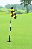 Practice Golf Putting Hole Royalty Free Stock Photography