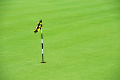 Practice Golf Putting Hole Royalty Free Stock Photos