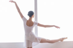Practicing in ballet studio. Stock Photography
