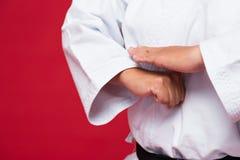 Practicing karate Royalty Free Stock Photos
