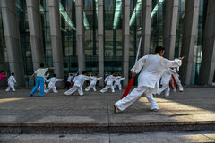 Practicing martial arts Stock Photography
