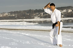Practicing martial arts with tonfa in the snow Stock Photography