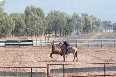 Practicing in progress at a Horsemanship Event