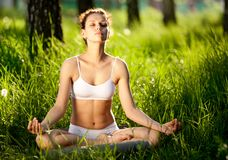 Practicing of yoga royalty free stock photography