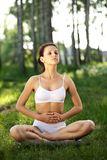 Practicing of yoga royalty free stock photo