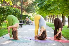 Practicing of yoga outdoors. royalty free stock images