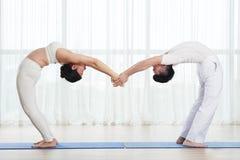Practising yoga royalty free stock image