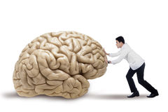 Practitioner pushing a brain. Portrait of male doctor pushing a brain, isolated on white background Stock Images