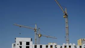 Pracujący budowa żurawie zbiory