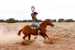 Pracujący kowboj Fotografia Royalty Free
