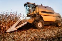 Pracujący rolnik używa syndykat dla zbierać kukurudzy Pracować szczegóły jesieni żniwo obrazy royalty free