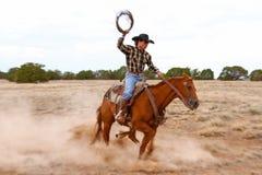 Pracujący kowboj obrazy stock