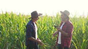 Pracy zespołowej husbandry pojęcia zwolnionego tempa mądrze uprawia ziemię wideo Dwa mężczyzny agronoma dwa rolnika trząść ręki p zbiory