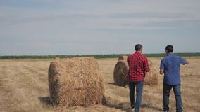 Pracy zespołowej rolnictwa mądrze uprawia ziemię pojęcie Dwa mężczyzn rolników pracownika chodzi studiowania styl życia dalej hay zbiory wideo