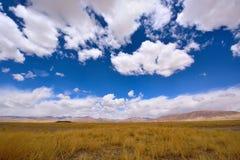 Pradaria das nuvens de tempestade da neve de China Tibet Foto de Stock