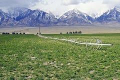 Pradaria elevada Irrigartion Fotografia de Stock